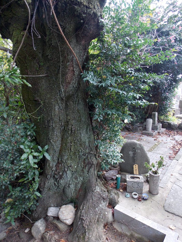 "Rengetsu's simple gravesite. The characters on the tombstone—""Otagaki Rengetsu's Grave""—were brushed by Tessai and carved on the stone. The huge cherry tree next to the tombstone was planted by Tessai upon Rengetsu's death."